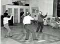 great grandmaster  shows tai chi