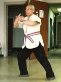 great grandmaster tai chi